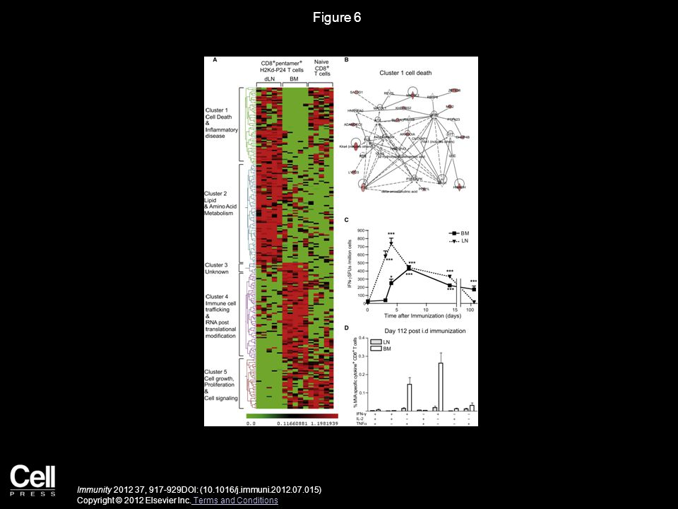 Figure 6 Immunity 2012 37, 917-929DOI: (10.1016/j.immuni.2012.07.015) Copyright © 2012 Elsevier Inc.