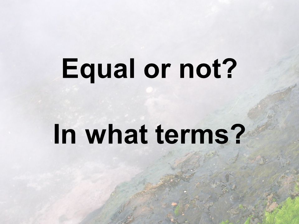Equal or not In what terms