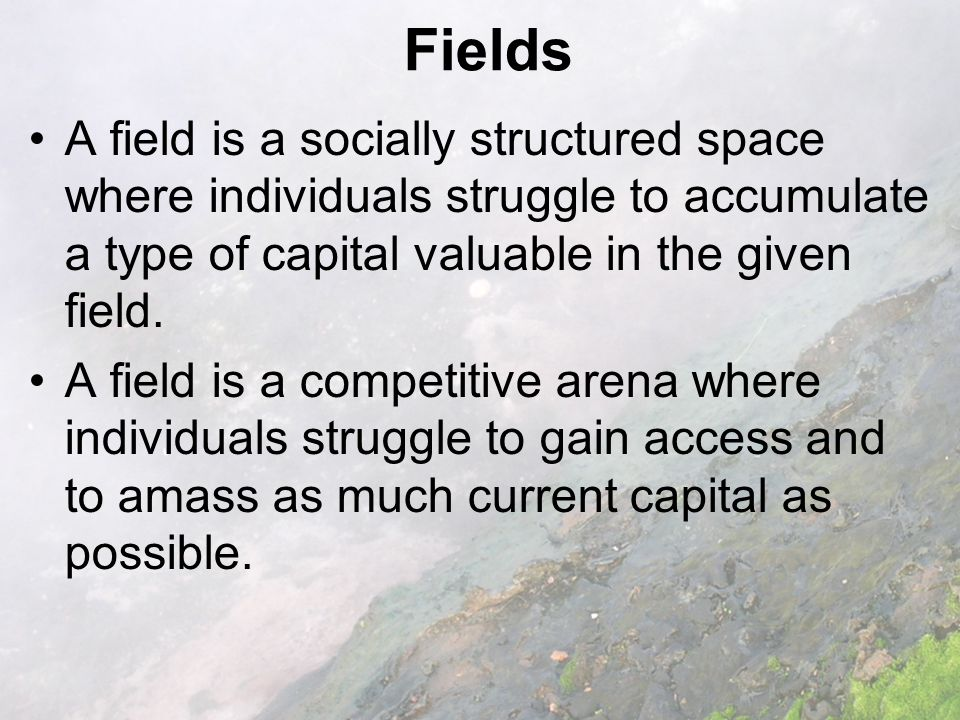 Fields A field is a socially structured space where individuals struggle to accumulate a type of capital valuable in the given field.