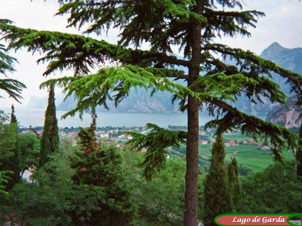 Vita Noble Powerpoints Lago de Garda