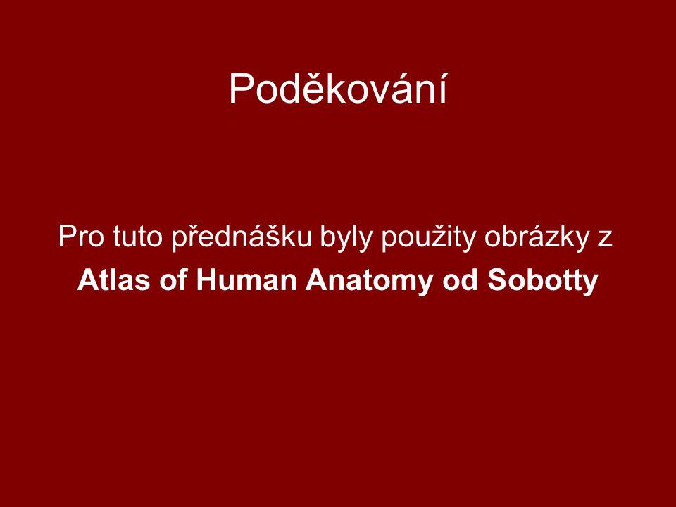 Poděkování Pro tuto přednášku byly použity obrázky z Atlas of Human Anatomy od Sobotty