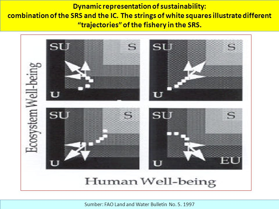 Dynamic representation of sustainability: combination of the SRS and the IC.
