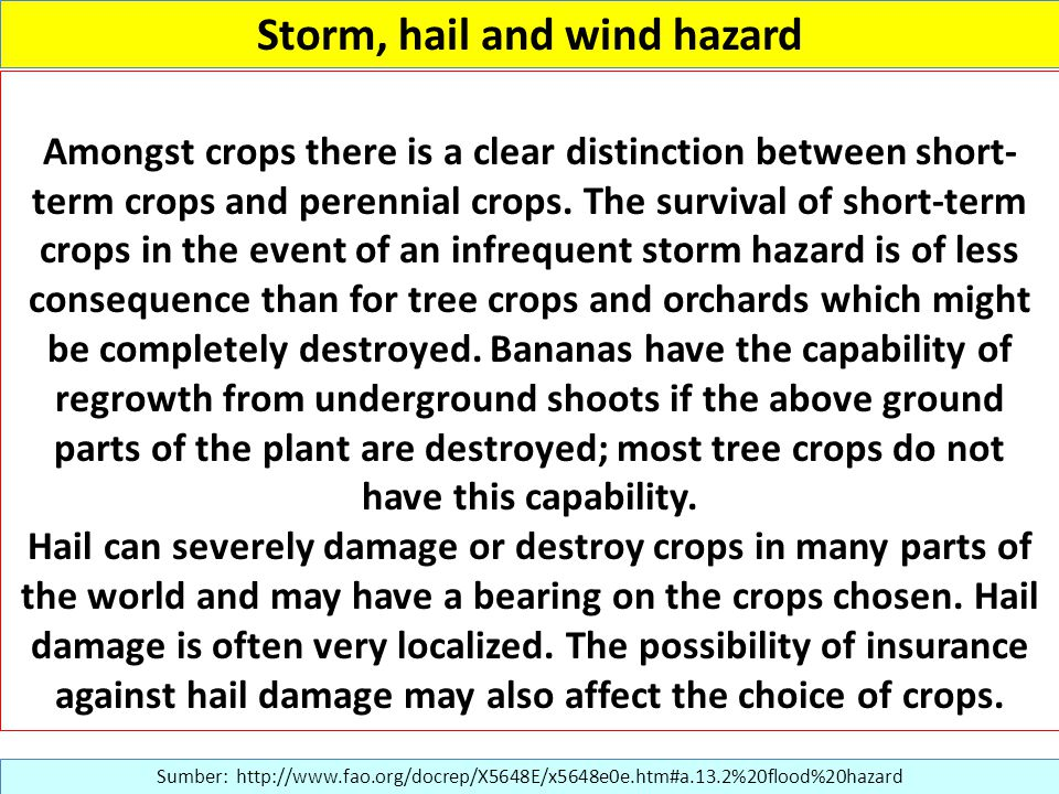 Storm, hail and wind hazard Sumber: http://www.fao.org/docrep/X5648E/x5648e0e.htm#a.13.2%20flood%20hazard Amongst crops there is a clear distinction between short- term crops and perennial crops.