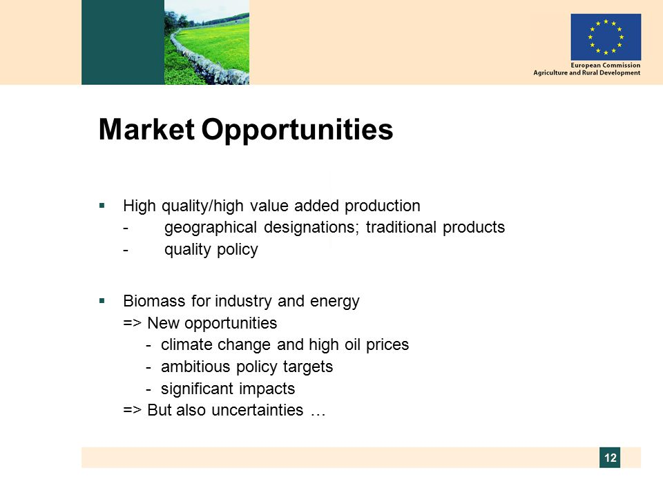 12 Market Opportunities  High quality/high value added production -geographical designations; traditional products -quality policy  Biomass for industry and energy => New opportunities - climate change and high oil prices - ambitious policy targets - significant impacts => But also uncertainties …