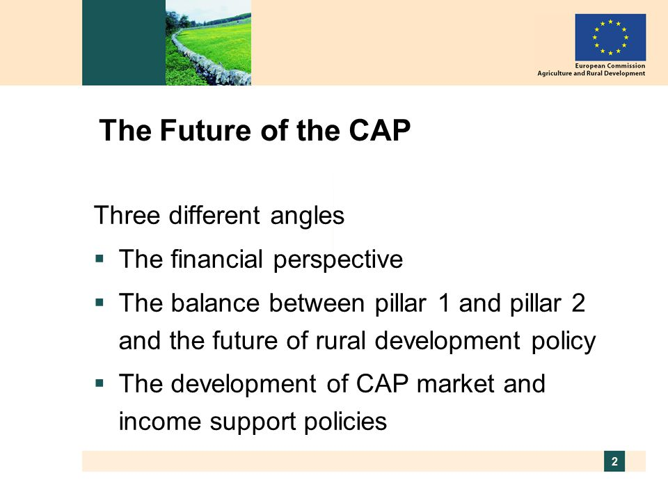 2 The Future of the CAP Three different angles  The financial perspective  The balance between pillar 1 and pillar 2 and the future of rural development policy  The development of CAP market and income support policies