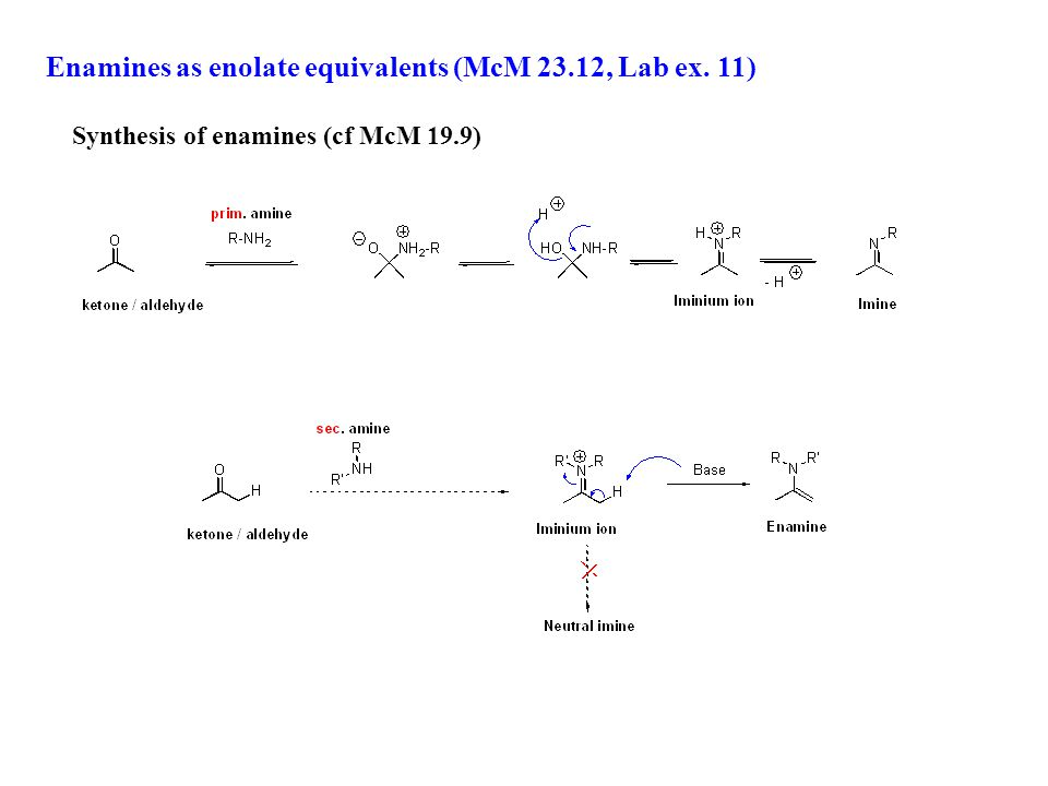 Enamines as enolate equivalents (McM 23.12, Lab ex. 11) Synthesis of enamines (cf McM 19.9)