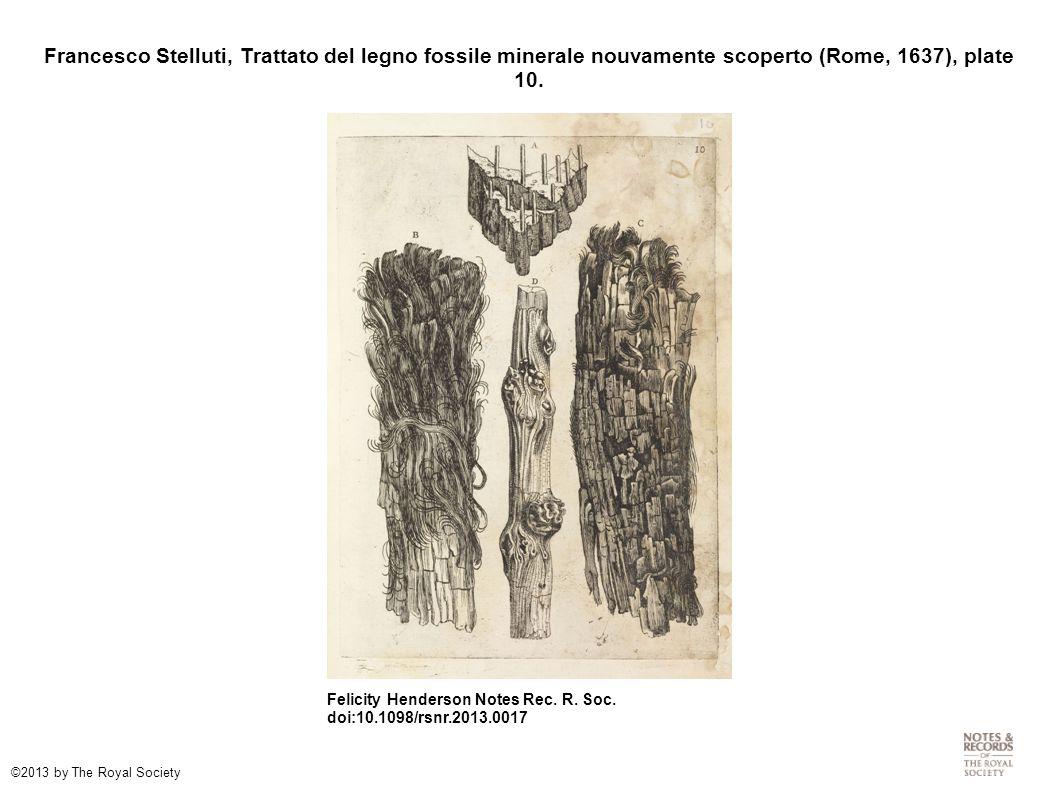 Francesco Stelluti, Trattato del legno fossile minerale nouvamente scoperto (Rome, 1637), plate 10.