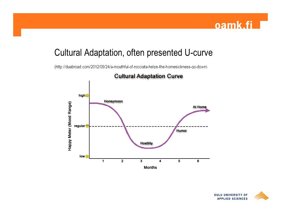 Cultural Adaptation, often presented U-curve (http://duabroad.com/2012/09/24/a-mouthful-of-rocciata-helps-the-homesickness-go-down )