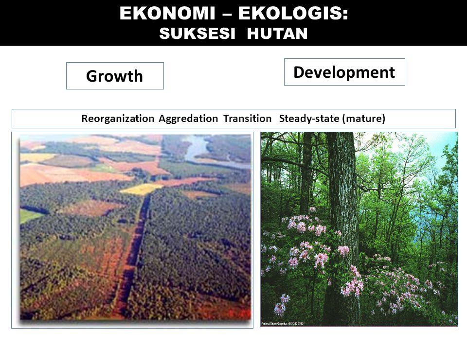 Growth Development Reorganization Aggredation Transition Steady-state (mature) EKONOMI – EKOLOGIS: SUKSESI HUTAN