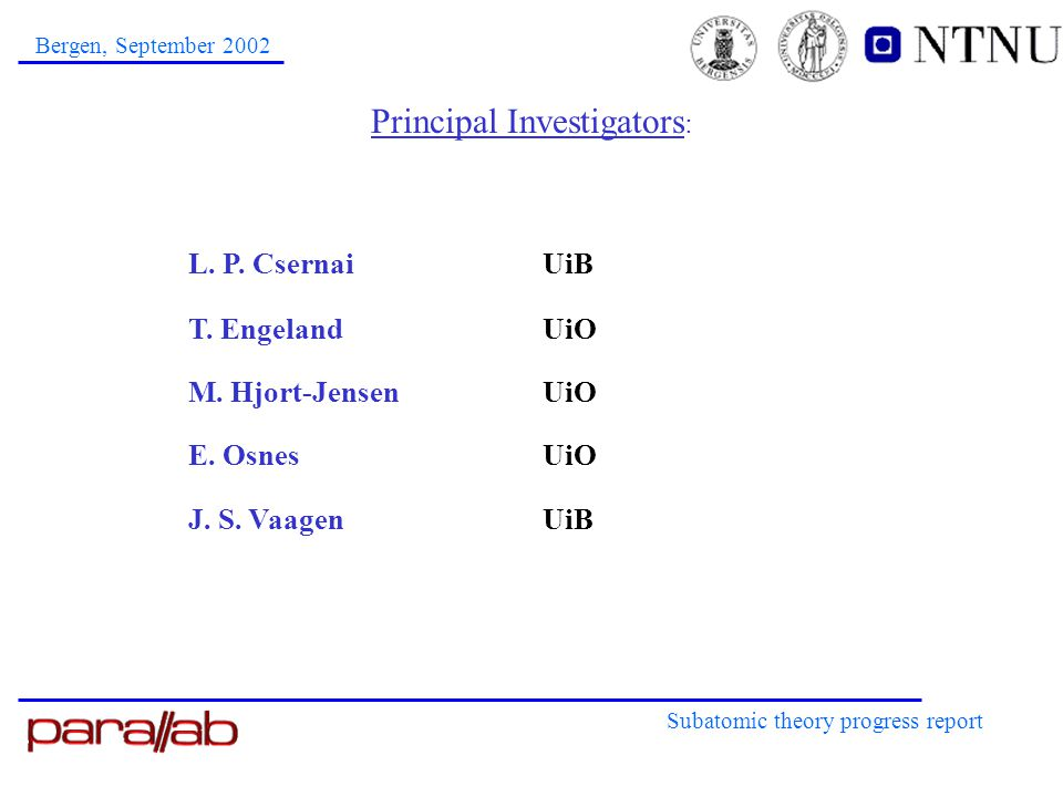 Principal Investigators : Subatomic theory progress report Bergen, September 2002 L.