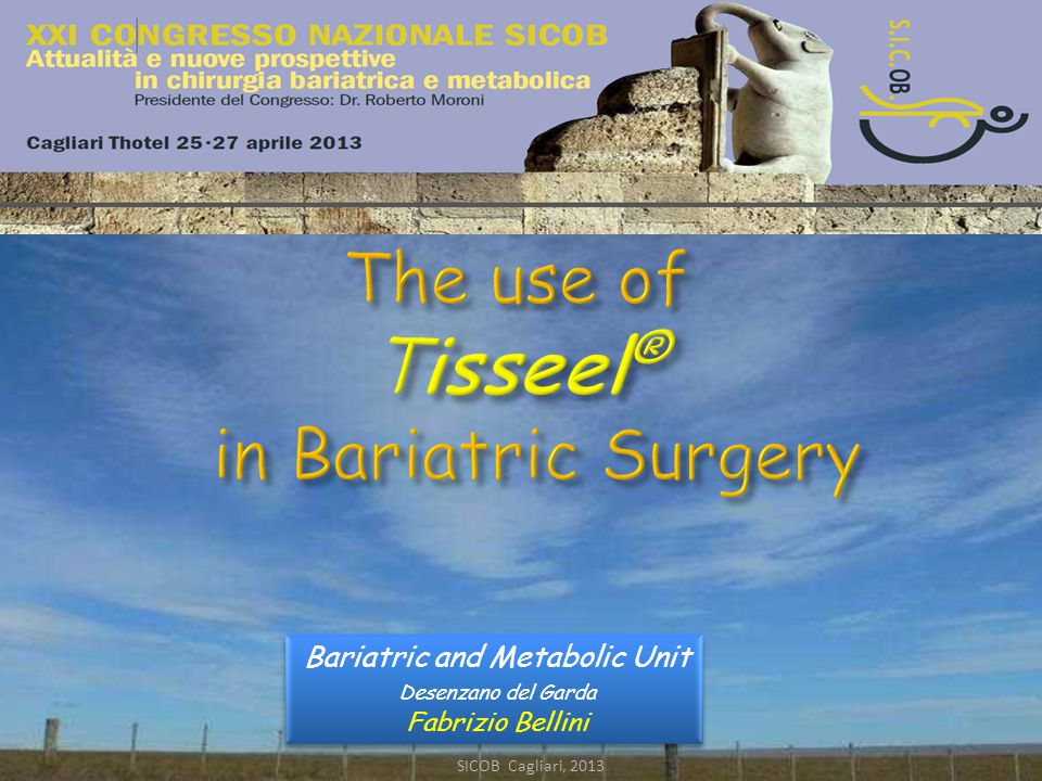 The use of Tisseel® in Bariatric Surgery SICOB Cagliari, 2013 The use of Tisseel ® in Bariatric Surgery Bariatric and Metabolic Unit Desenzano del Garda Fabrizio Bellini Bariatric and Metabolic Unit Desenzano del Garda Fabrizio Bellini