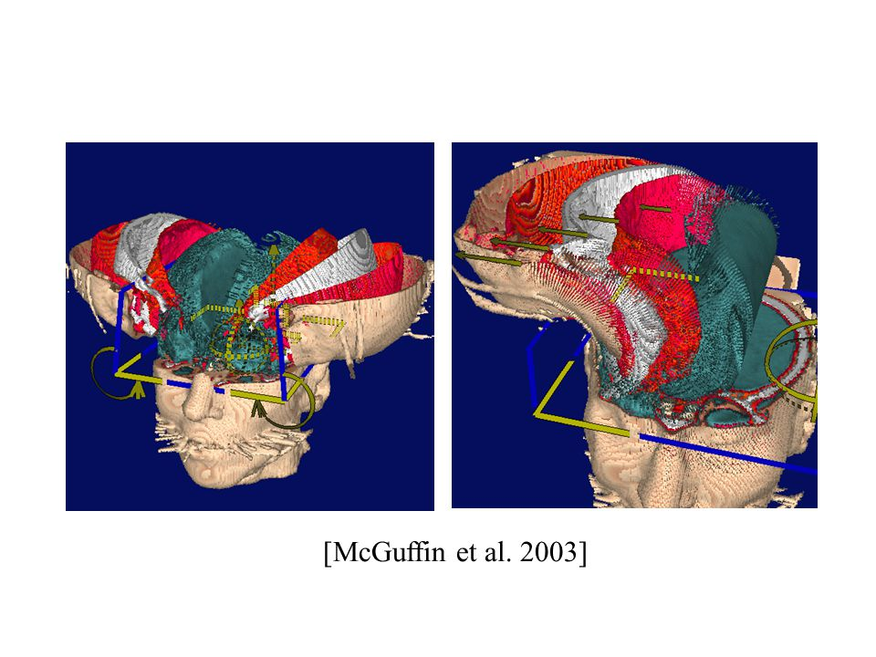 [McGuffin et al. 2003]