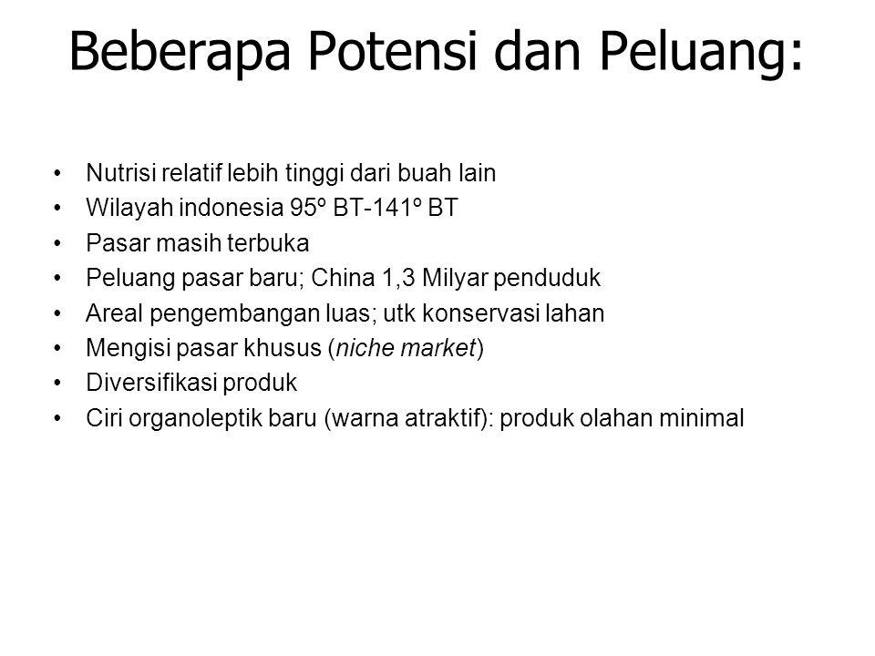 Beberapa Potensi dan Peluang: Nutrisi relatif lebih tinggi dari buah lain Wilayah indonesia 95º BT-141º BT Pasar masih terbuka Peluang pasar baru; Chi