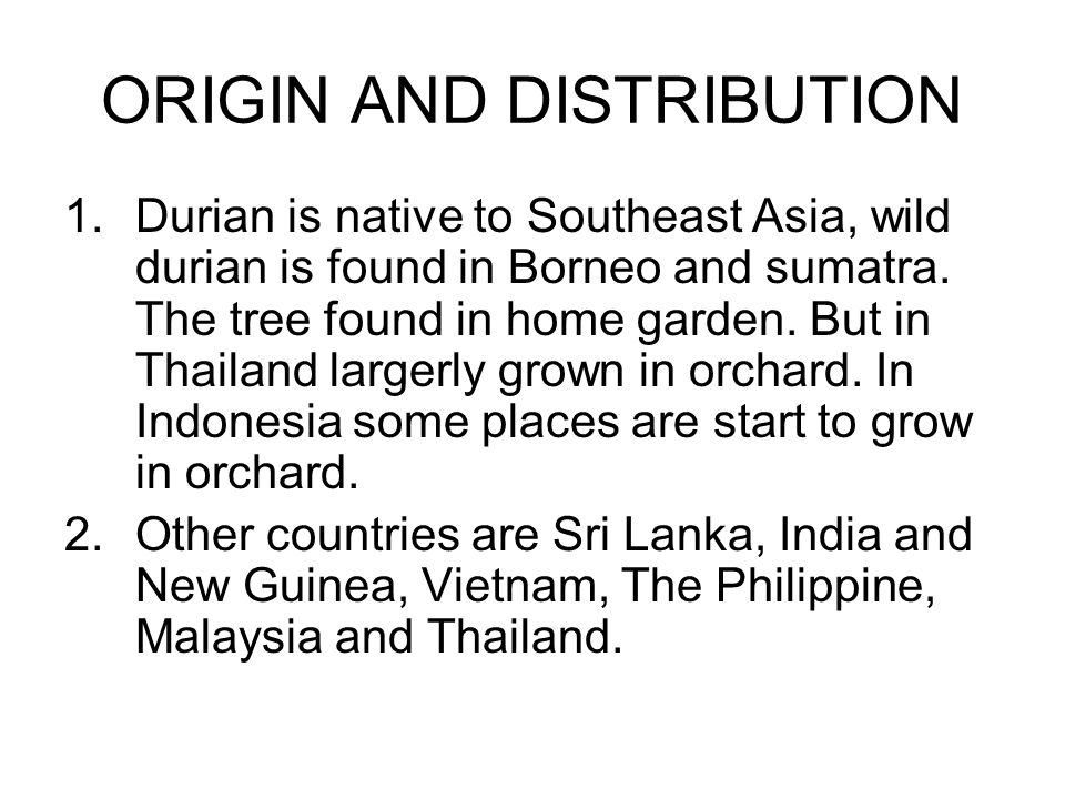 ORIGIN AND DISTRIBUTION 1.Durian is native to Southeast Asia, wild durian is found in Borneo and sumatra.