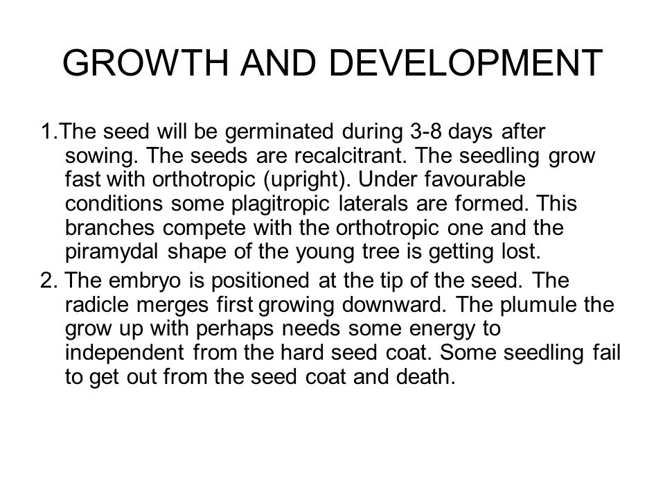 GROWTH AND DEVELOPMENT 1.The seed will be germinated during 3-8 days after sowing.