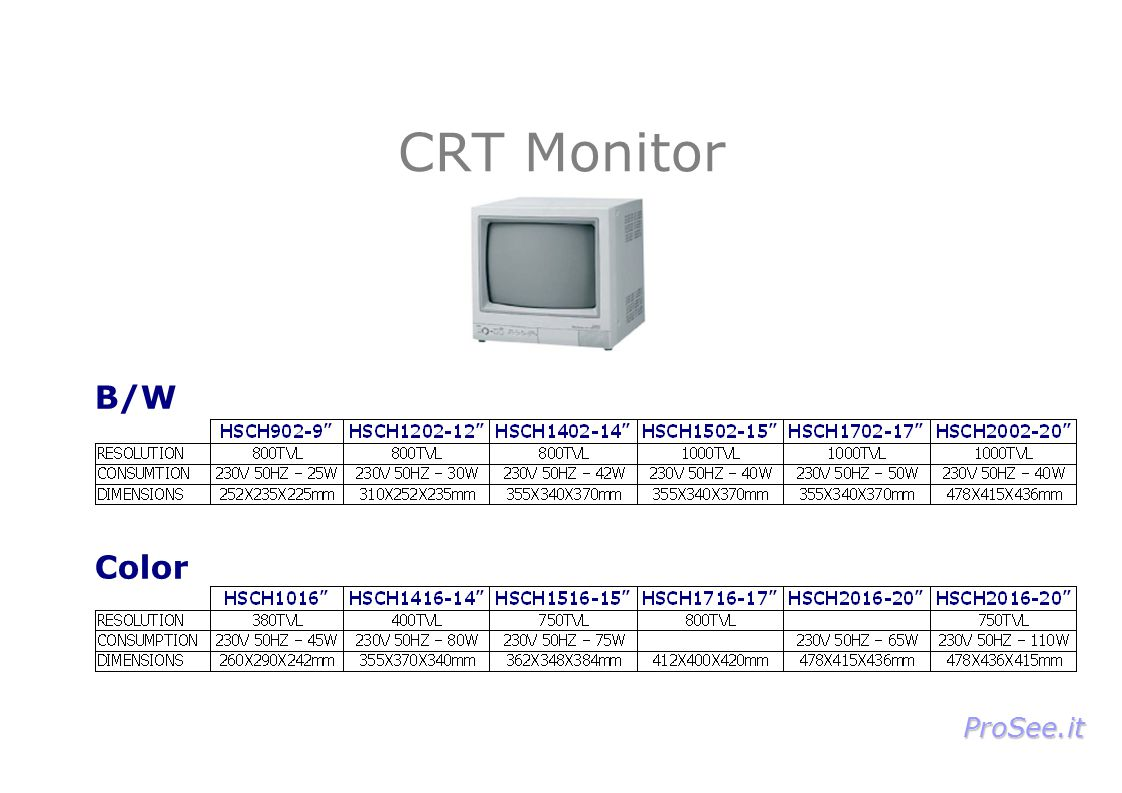 CRT Monitor B/W Color ProSee.it