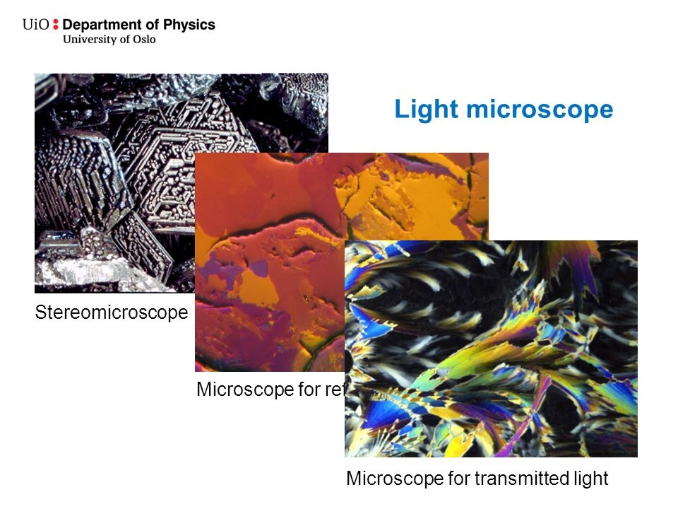 Light microscope Stereomicroscope Microscope for reflected light Microscope for transmitted light