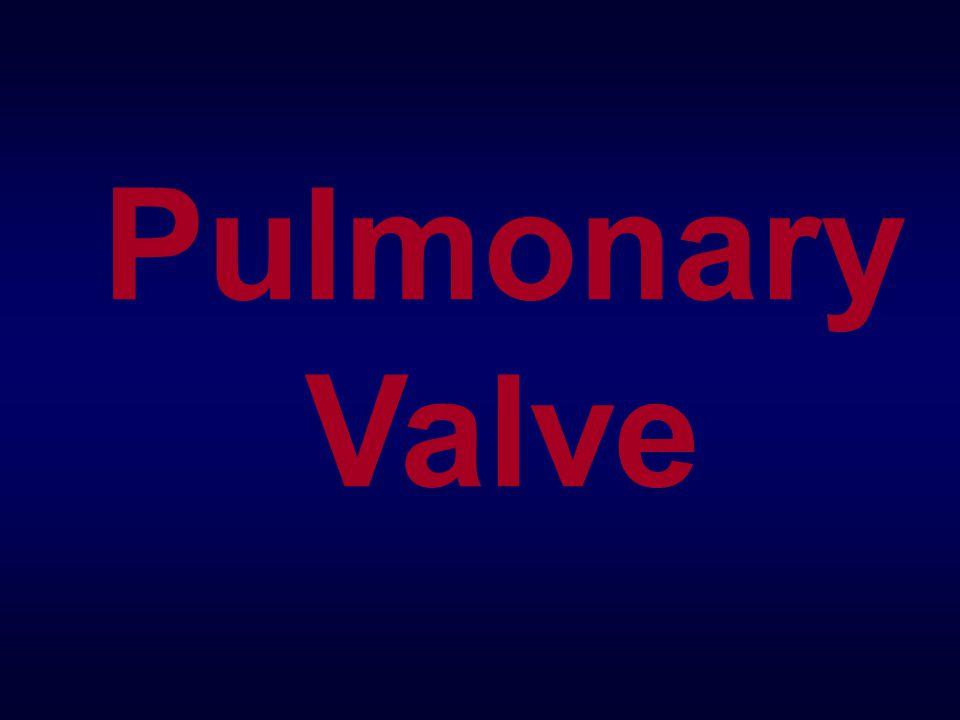 Pulmonary Valve