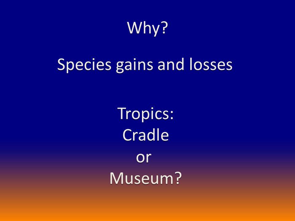 Cradle or Museum?