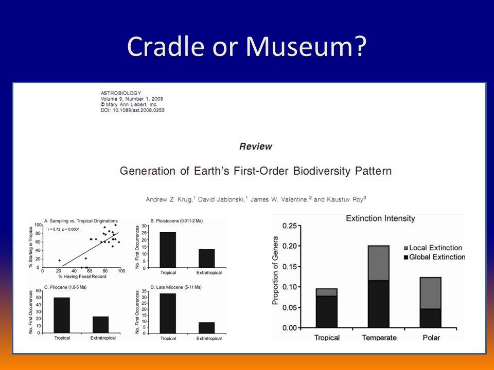 Cradle or Museum