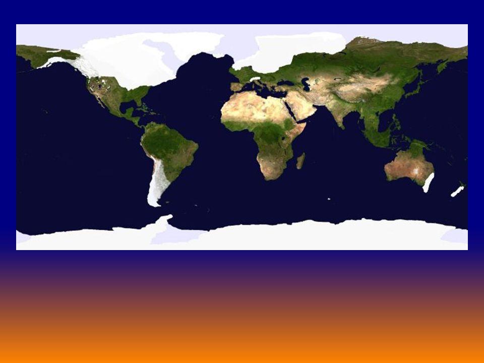 How did the diversity gradient develop? ? ? Glacial Interglacial