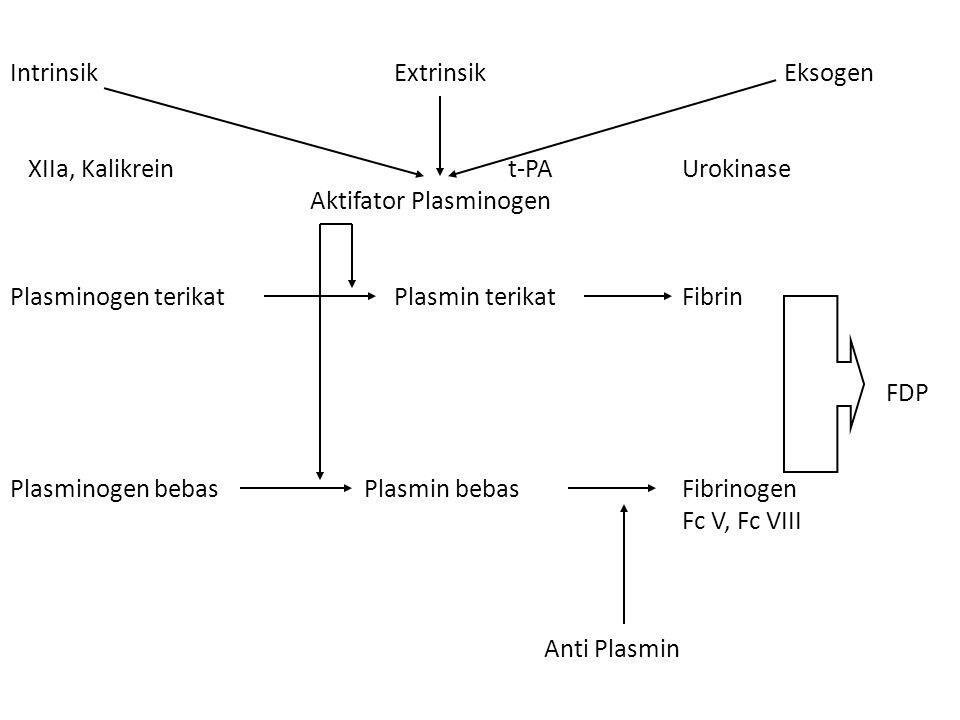 Intrinsik Extrinsik Eksogen XIIa, Kalikrein t-PAUrokinase Aktifator Plasminogen Plasminogen terikat Plasmin terikatFibrin FDP Plasminogen bebas Plasmin bebasFibrinogen Fc V, Fc VIII Anti Plasmin