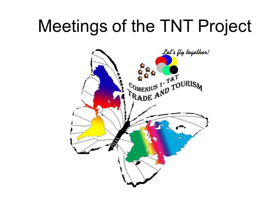 Meetings of the TNT Project