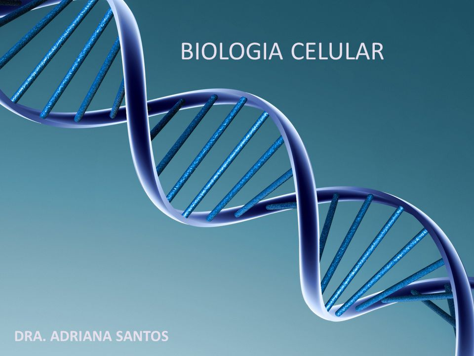BIOLOGIA Griego bio=vida logia= ciencia