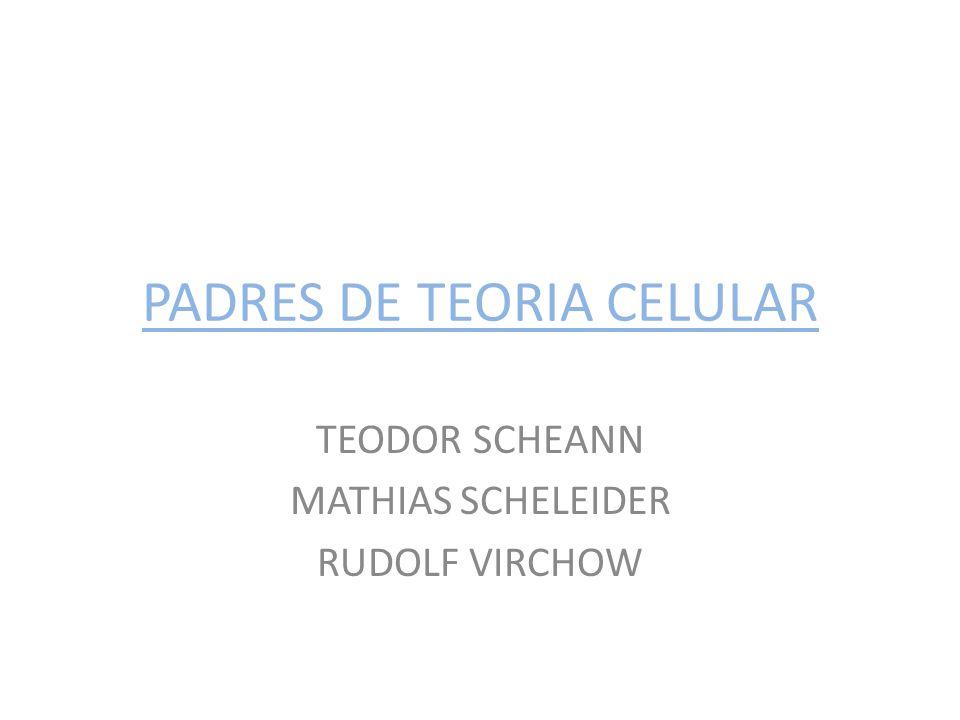PADRES DE TEORIA CELULAR TEODOR SCHEANN MATHIAS SCHELEIDER RUDOLF VIRCHOW