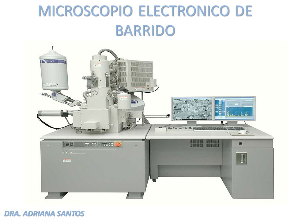 DRA. ADRIANA SANTOS MICROSCOPIO ELECTRONICO DE BARRIDO