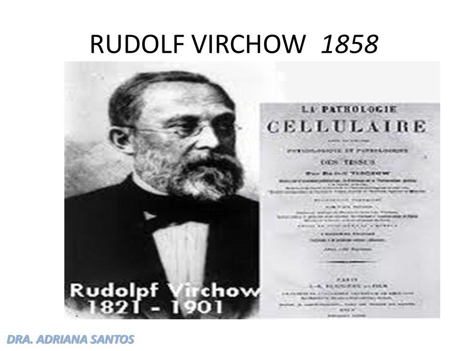 DRA. ADRIANA SANTOS RUDOLF VIRCHOW 1858