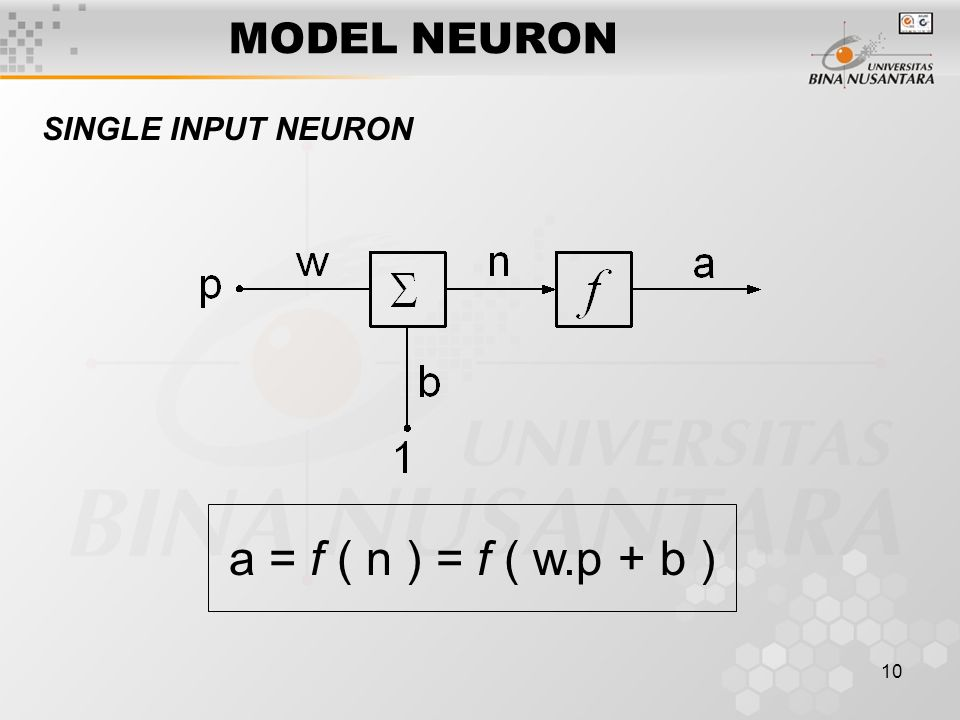 10 MODEL NEURON SINGLE INPUT NEURON a = f ( n ) = f ( w.p + b )