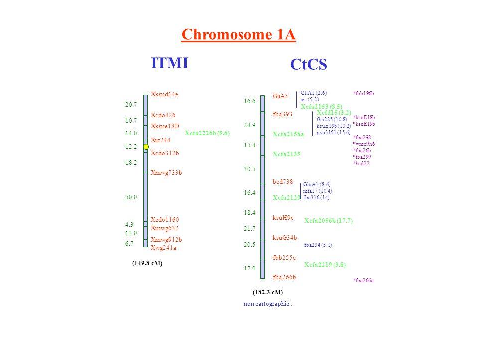 (149.8 cM) 20.7 10.7 14.0 4.3 13.0 6.7 12.2 18.2 50.0 Xksud14e Xcdo426 Xksue18D Xrz244 Xcdo312b Xmwg733b Xcdo1160 Xmwg632 Xmwg912b Xwg241a Xcfa2226b (5.6) Chromosome 1A ITMI CtCS GliA5 fba393 Xcfa2158a Xcfa2135 bcd738 Xcfa2129 ksuH9c ksuG34b fbb255c fba266b 16.6 24.9 15.4 30.5 16.4 18.4 21.7 20.5 17.9 GliA1 (2.6) ar (5.2) Xcfa2153 (8.5) Xcfd15 (3.2) fba285 (10.8) ksuE19b (13.2) psp3151 (15.6) GluA1 (8.6) mta17 (10.4) fba316 (14) Xcfa2056b (17.7) fba234 (3.1) Xcfa2219 (3.8) (182.3 cM) *fbb196b *ksuE18b *ksuE19b *fba298 *wmc9h6 *fba26b *fba299 *bcd22 *fba266a non cartographié :