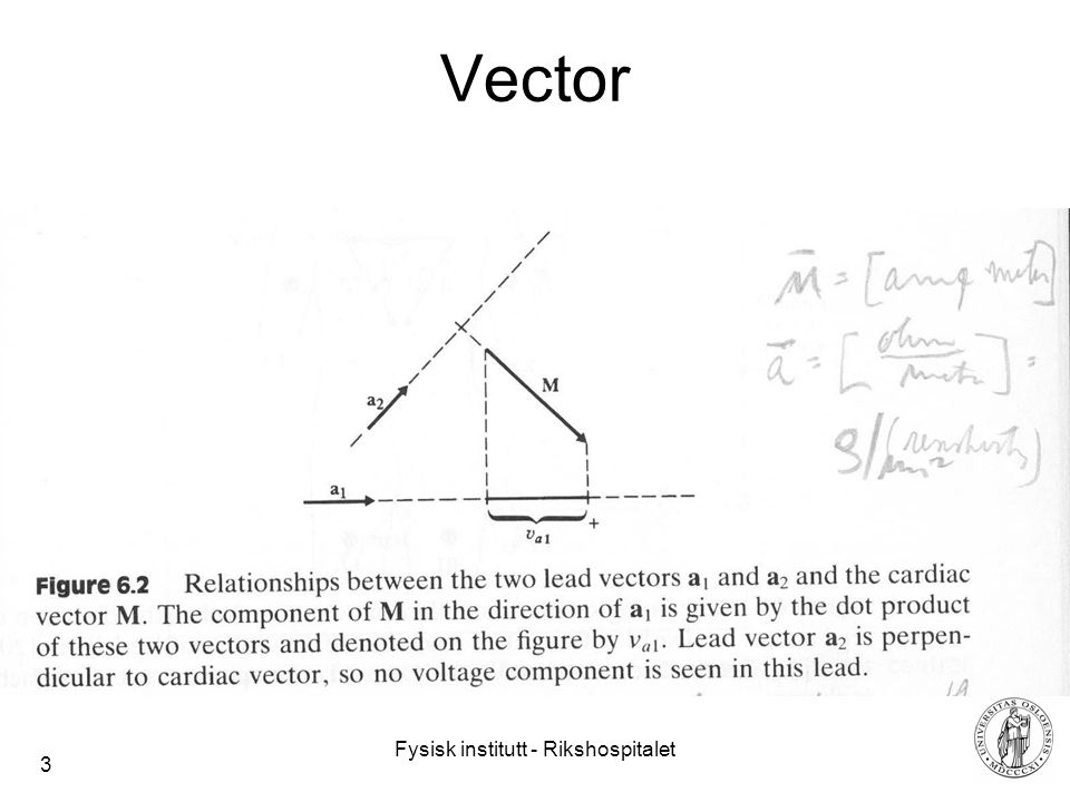 Fysisk institutt - Rikshospitalet 3 Vector