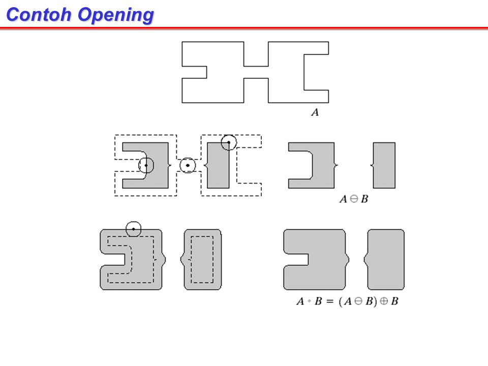 Contoh Opening