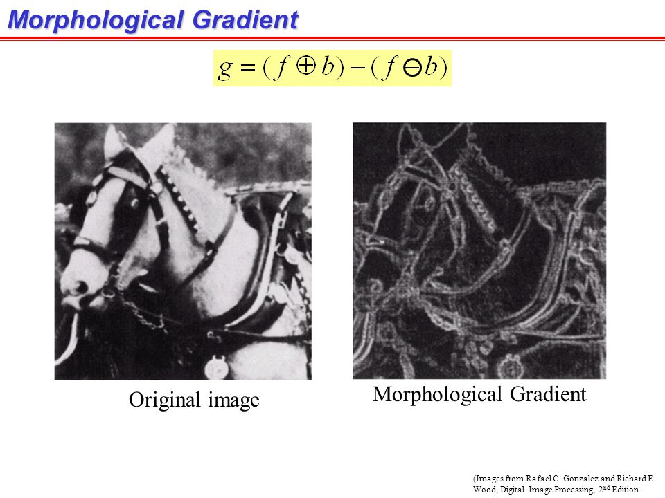 (Images from Rafael C. Gonzalez and Richard E. Wood, Digital Image Processing, 2 nd Edition. Morphological Gradient Original image Morphological Gradi