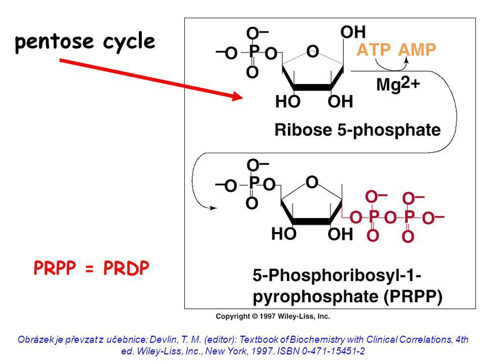 pentose cycle Obrázek je převzat z učebnice: Devlin, T.