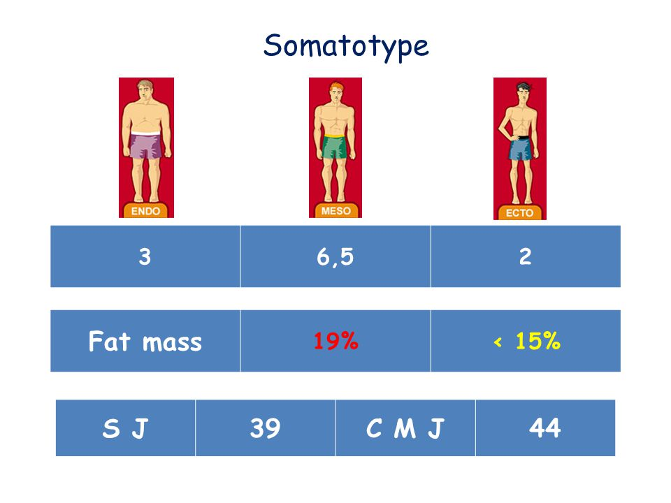 36,52 Fat mass 19%< 15% Somatotype S J39C M J44