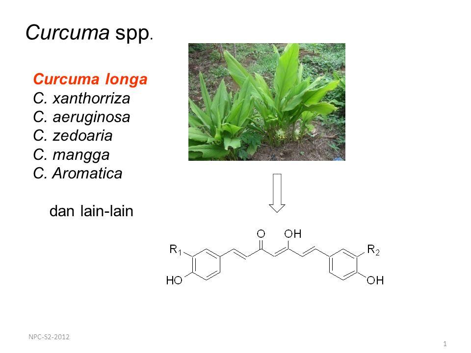1 Curcuma spp. Curcuma longa C. xanthorriza C. aeruginosa C. zedoaria C. mangga C. Aromatica dan lain-lain NPC-S2-2012