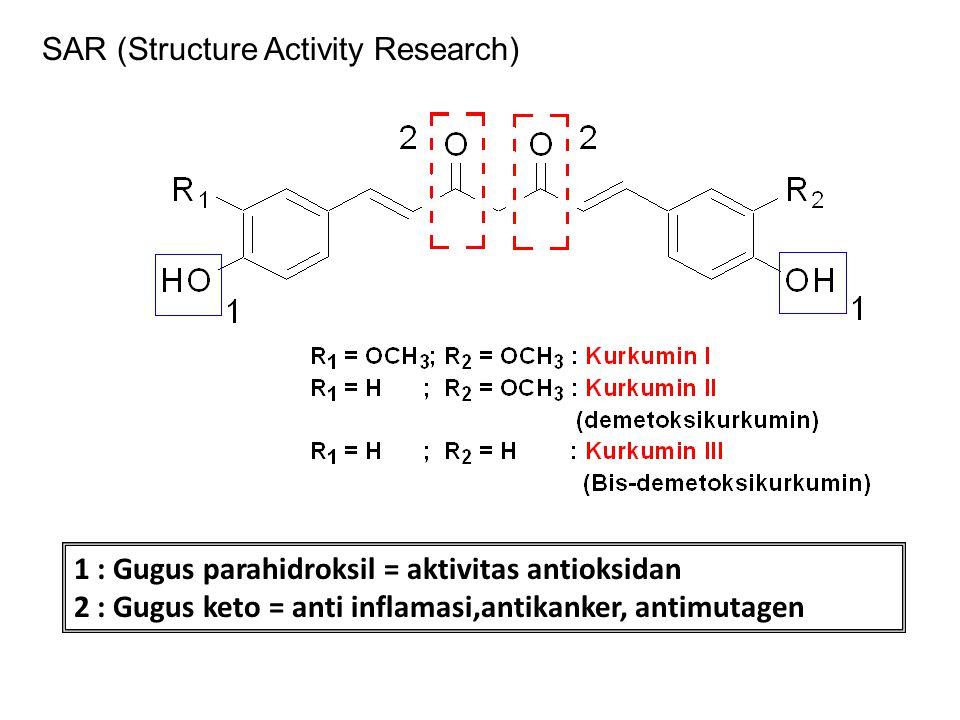 1 : Gugus parahidroksil = aktivitas antioksidan 2 : Gugus keto = anti inflamasi,antikanker, antimutagen SAR (Structure Activity Research)