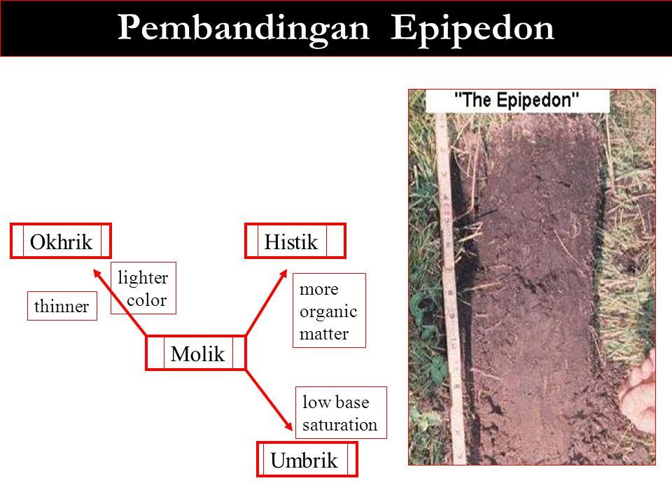 Pembandingan Epipedon OkhrikHistik Molik Umbrik thinner lighter color more organic matter low base saturation