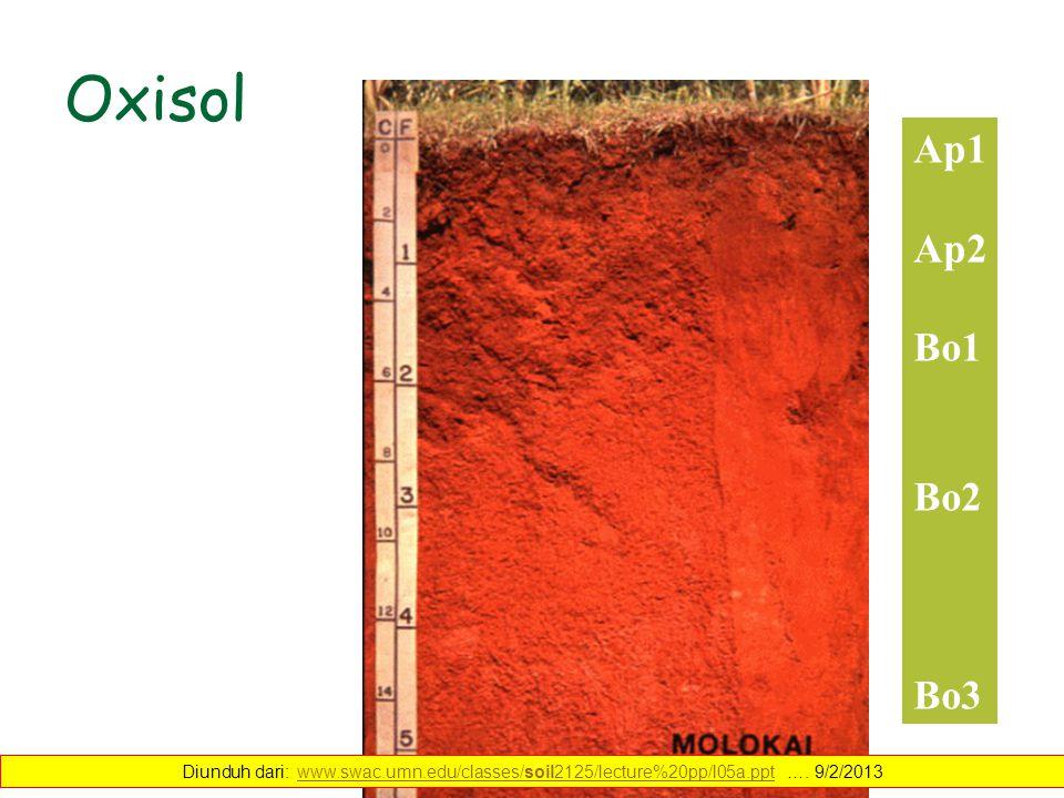Oxisol Ap1 Ap2 Bo1 Bo2 Bo3 Diunduh dari: www.swac.umn.edu/classes/soil2125/lecture%20pp/l05a.ppt …. 9/2/2013www.swac.umn.edu/classes/soil2125/lecture%