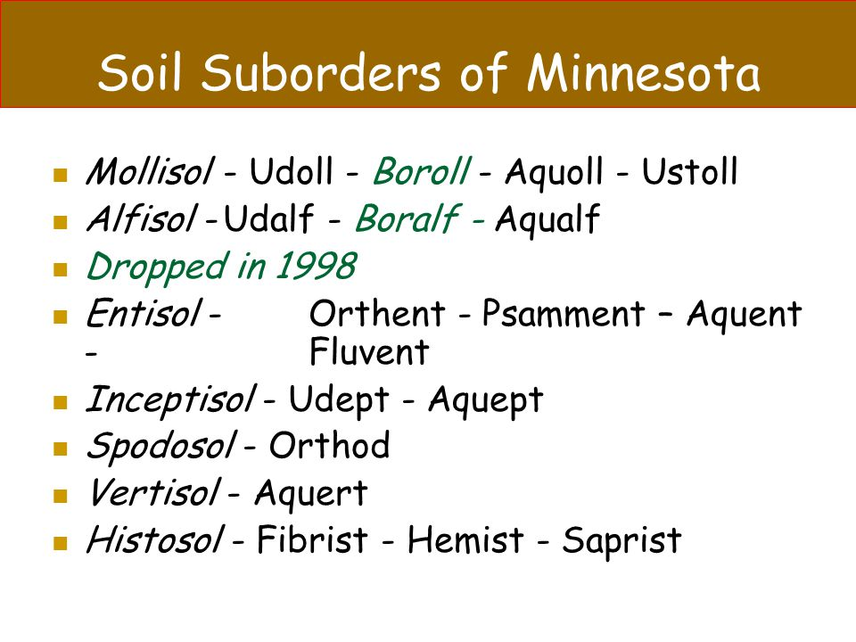 Soil Suborders of Minnesota Mollisol- Udoll - Boroll - Aquoll - Ustoll Alfisol -Udalf - Boralf - Aqualf Dropped in 1998 Entisol -Orthent - Psamment –
