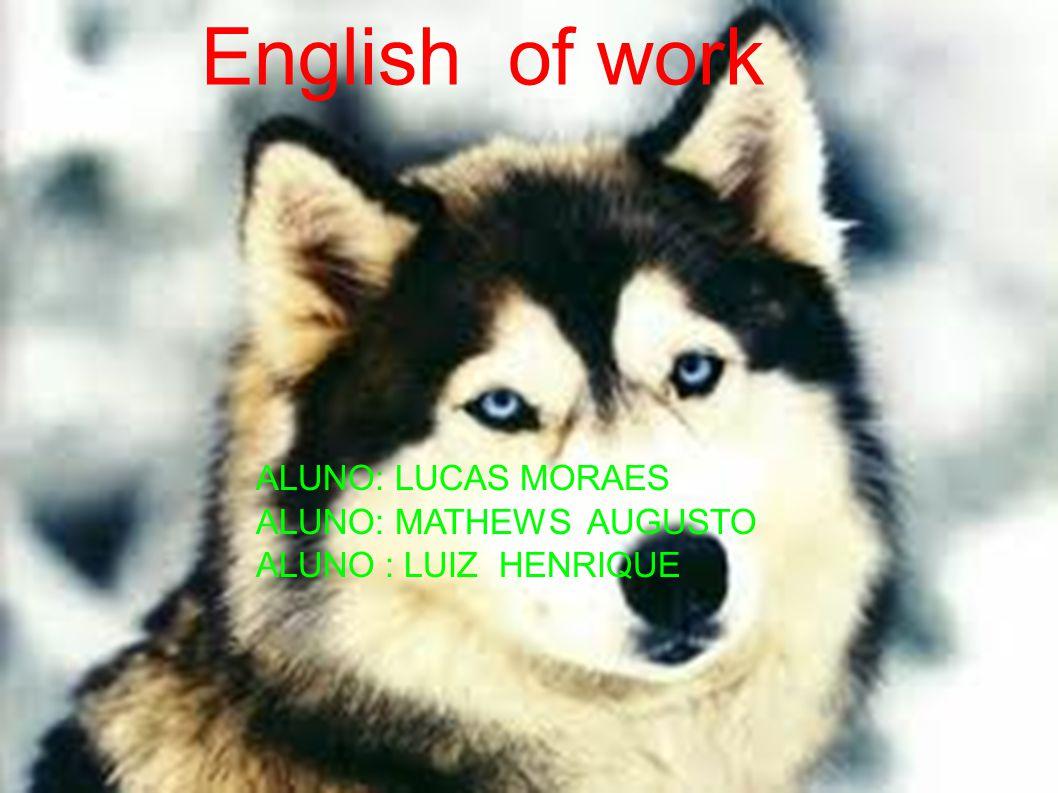 English of work ALUNO: LUCAS MORAES ALUNO: MATHEWS AUGUSTO ALUNO : LUIZ HENRIQUE ALUNO: LUCAS MORAES ALUNO: MATHEWS AUGUSTO ALUNO : LUIZ HENRIQUE English of work