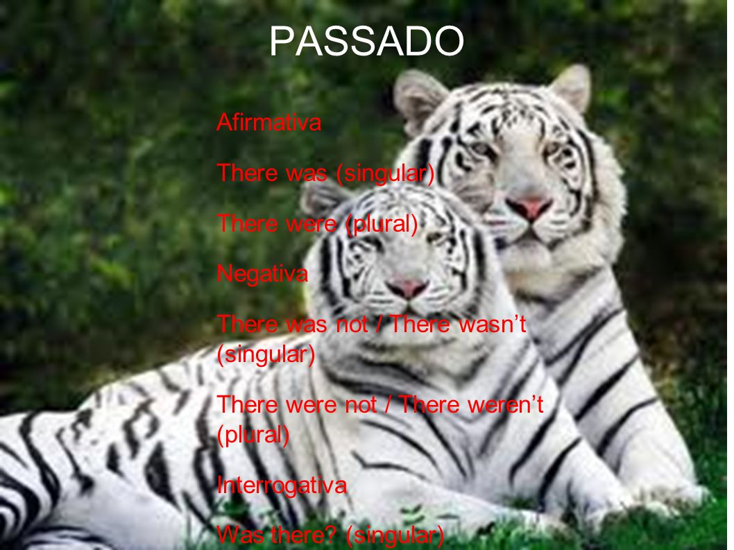 PASSADO Afirmativa There was (singular)‏ There were (plural)‏ Negativa There was not / There wasn't (singular)‏ There were not / There weren't (plural)‏ Interrogativa Was there.
