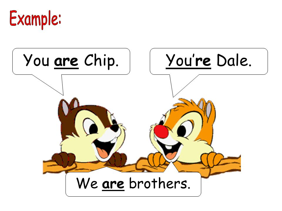You are Chip.You're Dale. We are brothers.