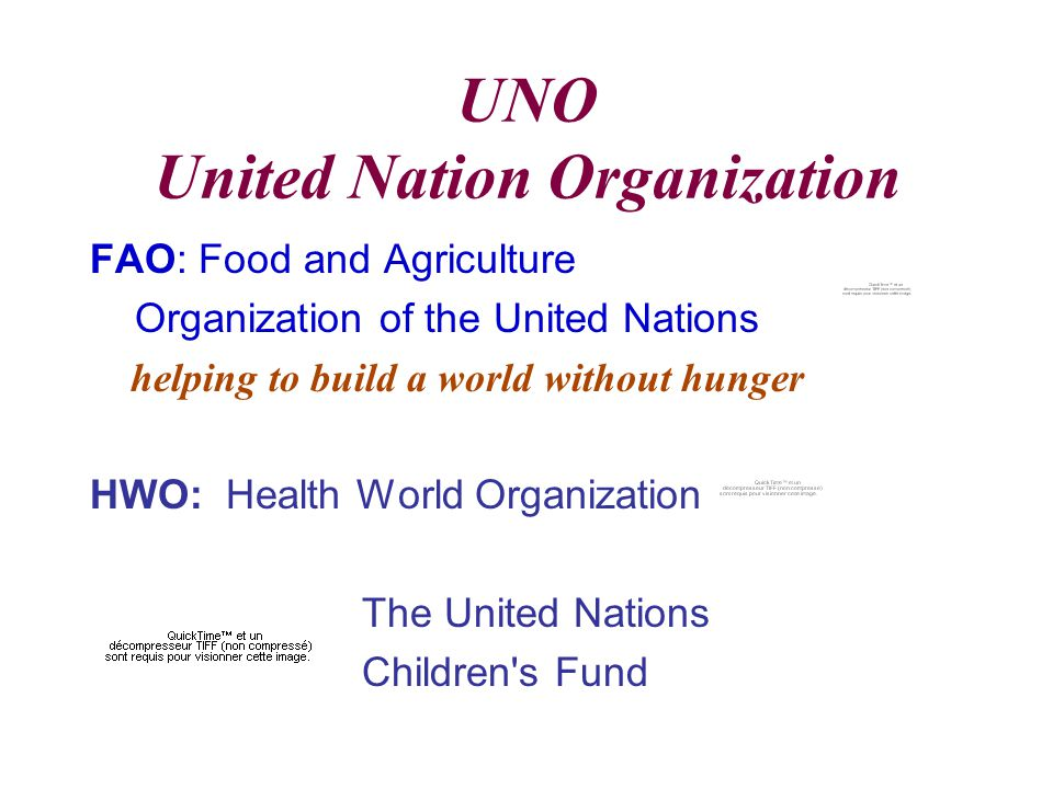 UNO United Nation Organization FAO: Food and Agriculture Organization of the United Nations helping to build a world without hunger HWO: Health World Organization The United Nations Children s Fund