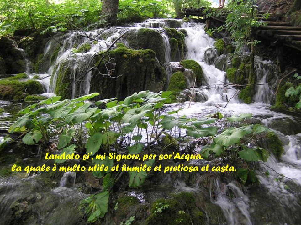 Laudato si , mi Signore, per frate Vento et per aere et nubilo et sereno et onne tempo, per lo quale, a le Tue creature dài sustentamento.