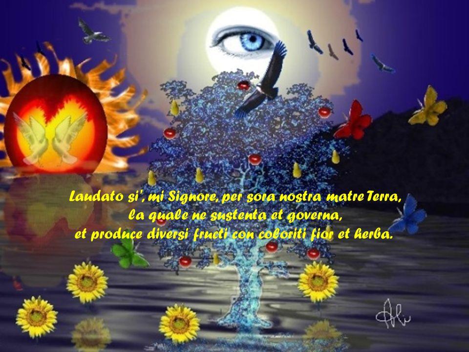 Laudato si , mi Signore, per frate Focu, per lo quale ennallumini la nocte: ed ello è bello et iocundo et robustoso et forte.