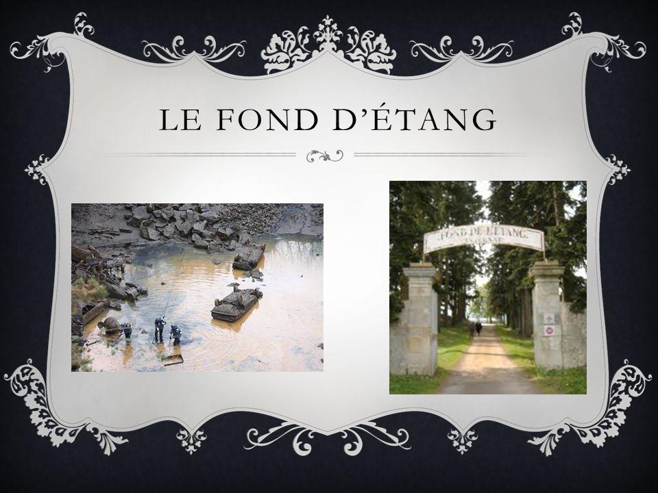 LE FOND D'ÉTANG